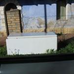 gennaio 2011 cosa si vede in giro: rifiuti